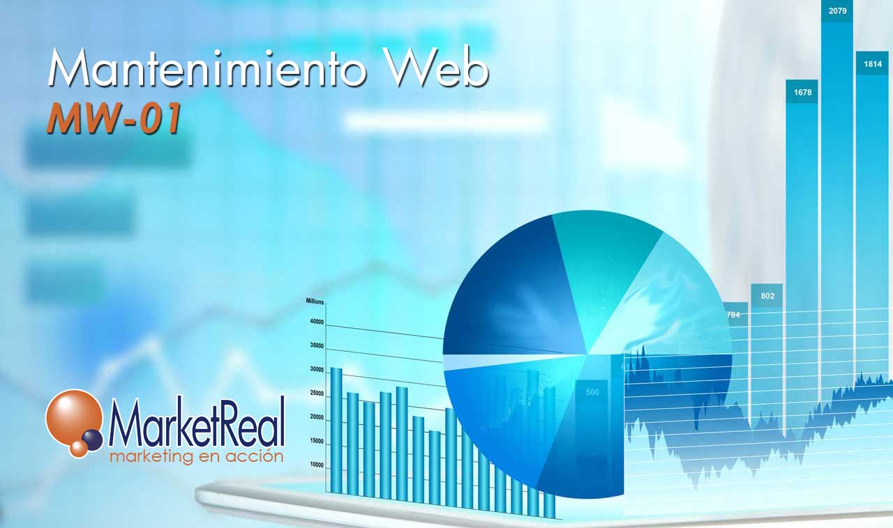Mantenimiento web 01 MarketReal